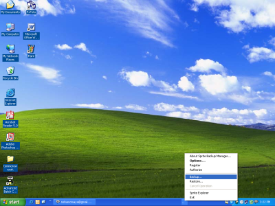 Sprite Backup Manager
